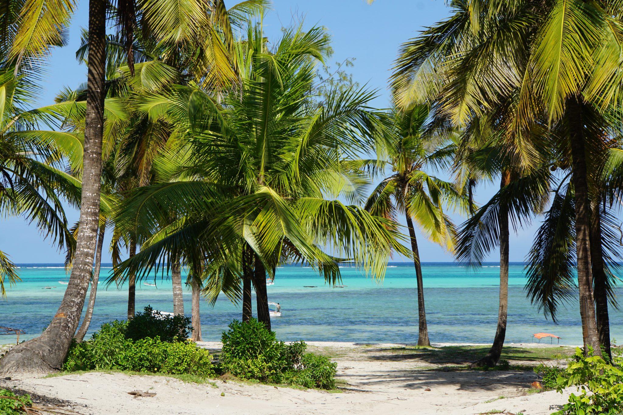 Circuito Zanzibar : Zanzibar ispirazionale e solidale destinazione umana