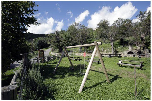 Montagna verde 5